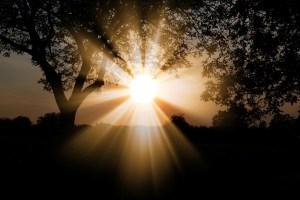 Light Source Reiki Attunement