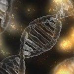 DNA Shakti