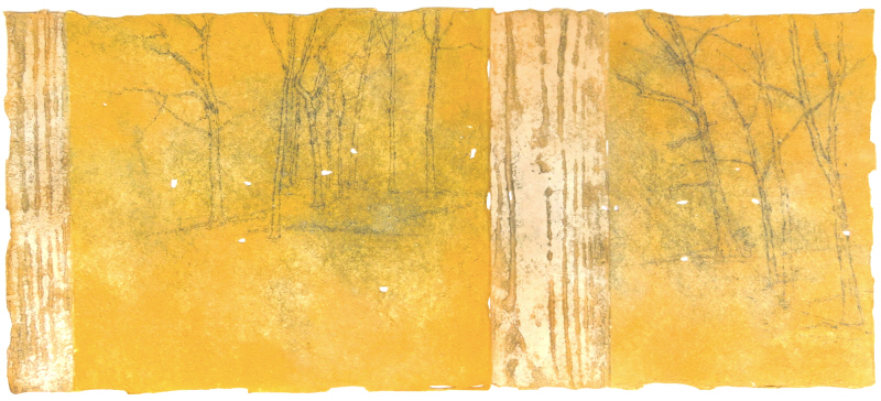 tree, graphite drawing, yellow paint on paper