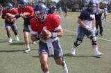 Owls starting quarterback Sam Glaesmann