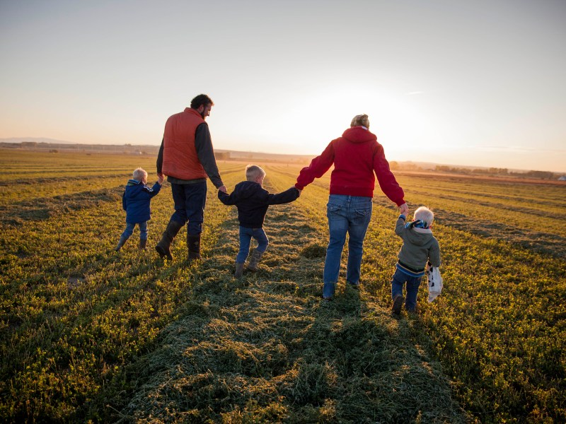 NFU Celebrates National Agriculture Day — Recognizes Family Farmers' Full Breadth of Contributions to Everyday Life