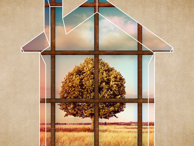 Outline of house with window looking out at tree. Image meant to signify feeling trapped and the improved communication skills and emotional connection achieved from attending intensive marriage counseling in Massachusetts such as a Hold Me Tight Workshop in Massachusetts.