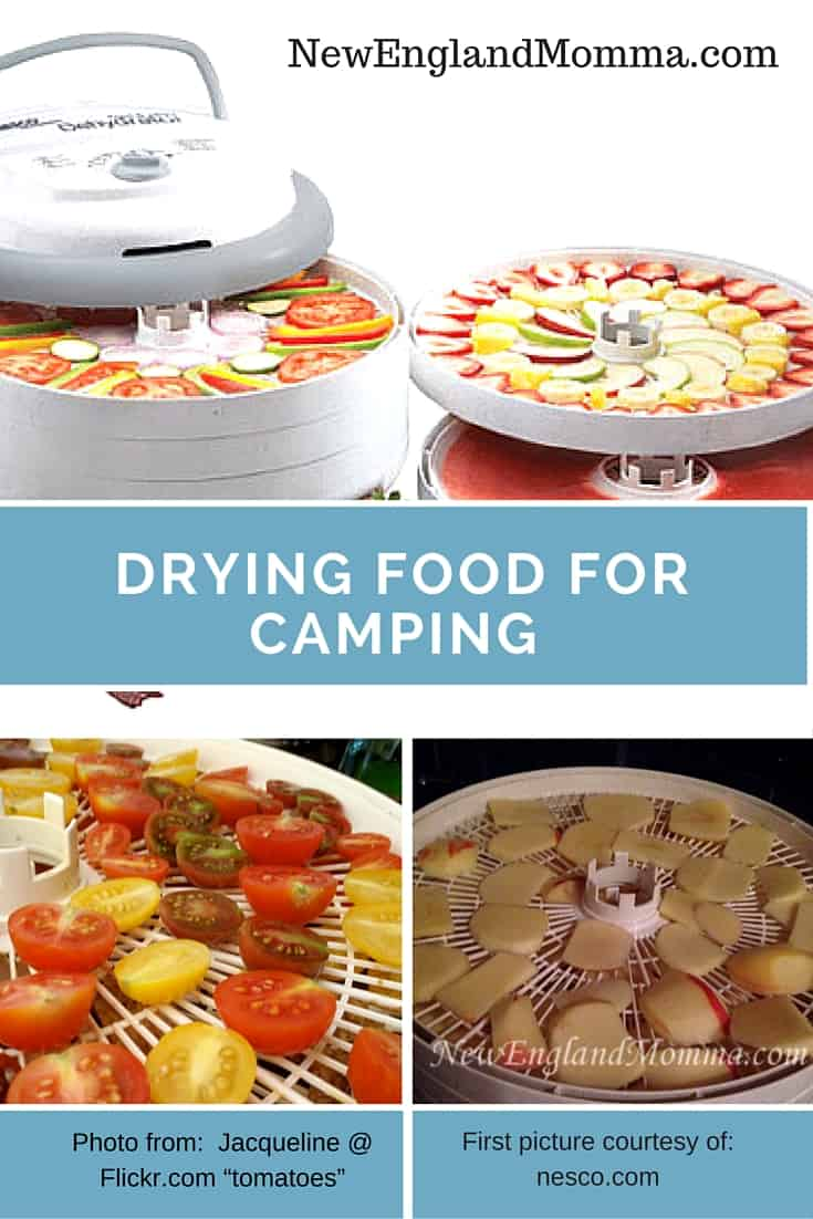 Drying food for camping is a great way to save space as well as make a healthy treat for hiking or camping! #HowTo #DryFood #BeefJerkey  #driedfood #HikingSnacks