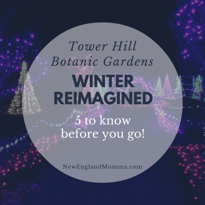 Winter Reimagined -5 to Know Before You Go