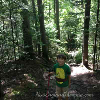 How to Get your Kids Interested in Hiking