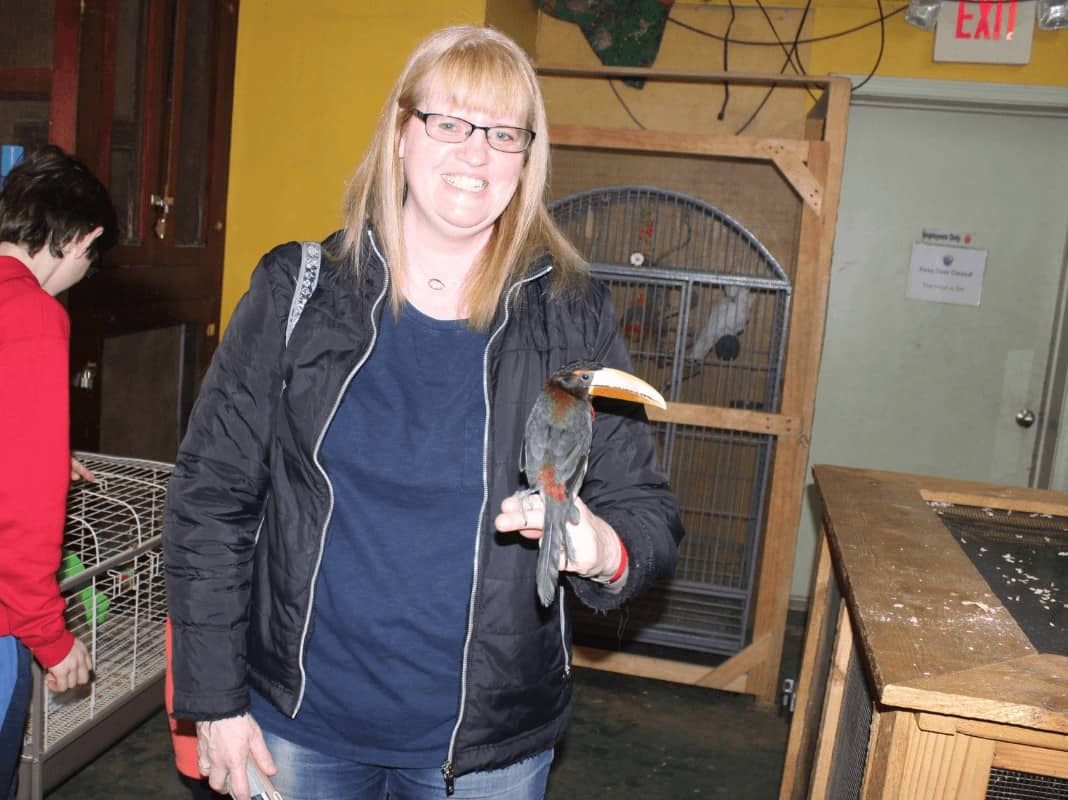 A woman holding a toucan on her fingers while getting a tour of Animal Adventures in Bolton, MA