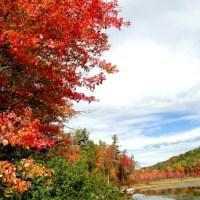 Pictures of a Beautiful Fall Foliage Season