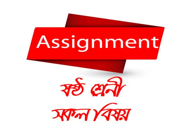 Class 6 Assignment All Subject Solutions