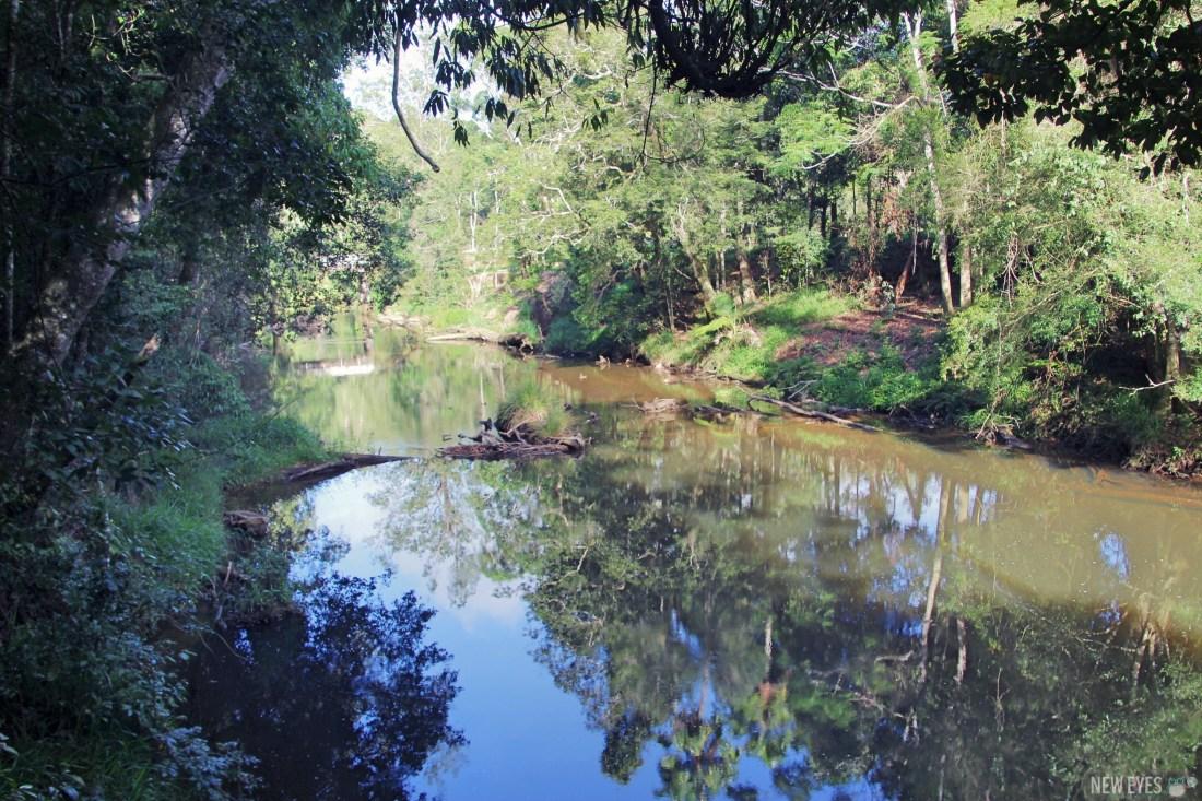 Broken river, là où vivent les ornithorynques @neweyes