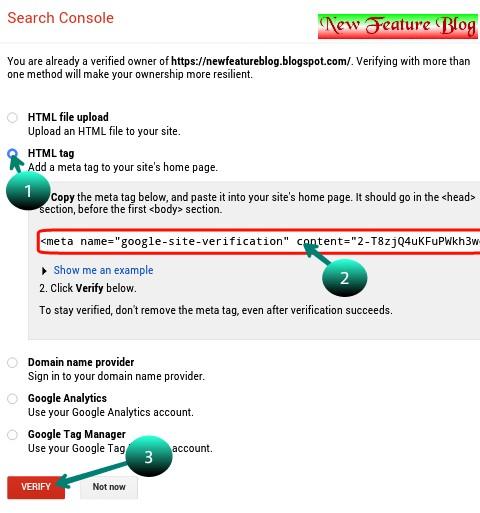 select HTML tag , copy meta code and verify