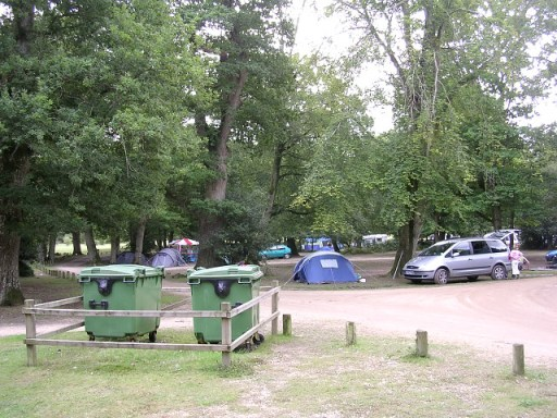 Northern end of Hollands Wood camp site, New Forest August 2005 / Jim Champion / CC BY-SA 2.0