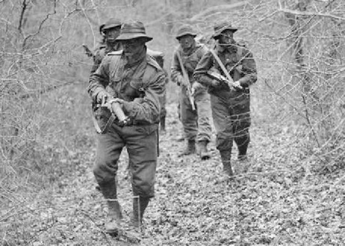 new forest - second world war