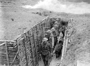 new forest - first world war