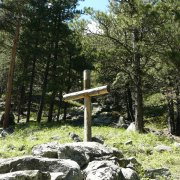 Wyoming Cross
