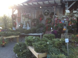 wreathes!