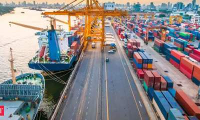 Chunk of 1.10 lakh hectares land with ports to be utilised to develop industries: Shipping Minister