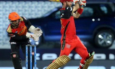 IPL 2021: RCB Head Coach Praises Glenn Maxwells Maturity After Win vs SRH