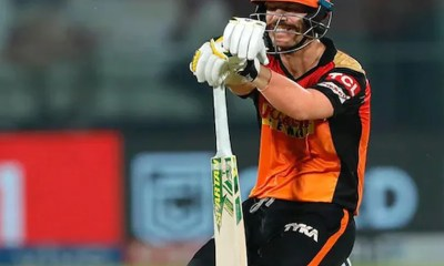 David Warner Receives Support From Fans After SunRisers Hyderabad Remove Him As Captain | Cricket News