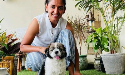 Harmanpreet Kaur Posts Adorable Picture With Her Dog | Cricket News