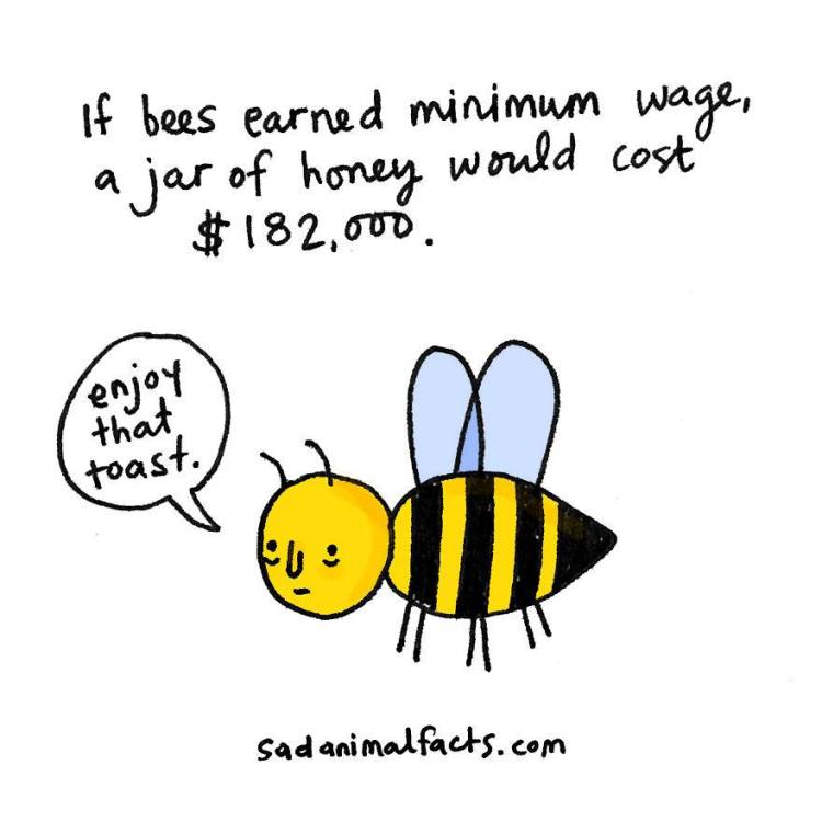 Sad-Animal-Facts-Bees
