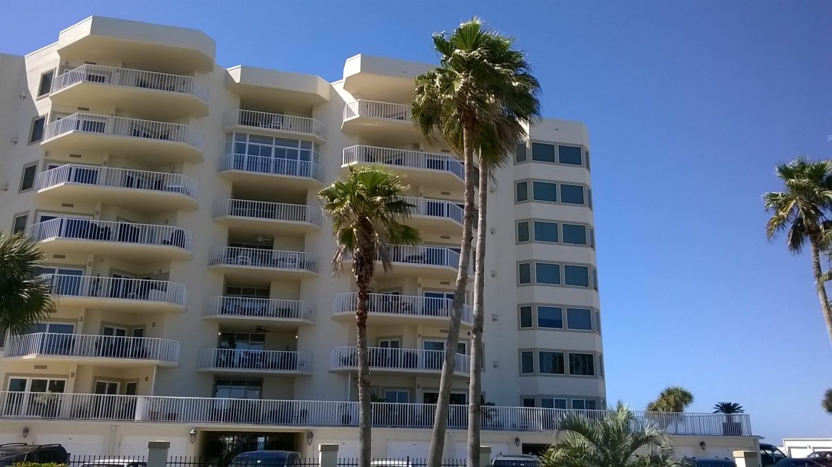 Gulf Shore Dr, Destin, Florida - Washingtonia Palm 04