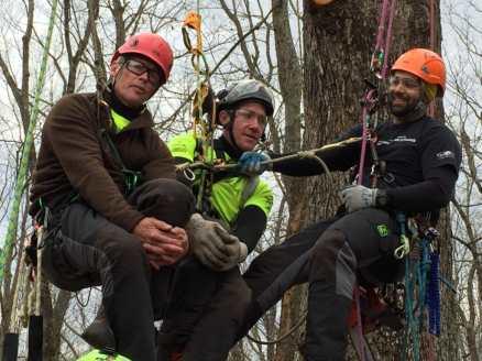 New Leaf Arboriculture - Arborist & Tree Service - Training