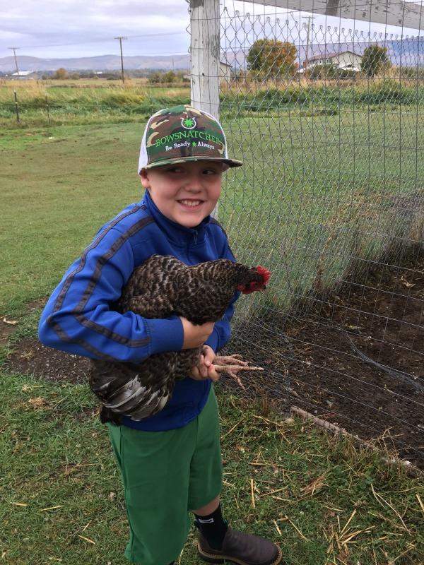 grateful-chicken