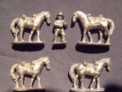 Natal native horse holder & 4 horses.