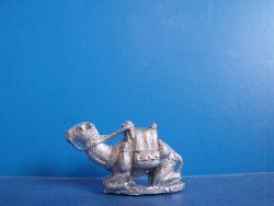 Kneeling Camel Corp Camel