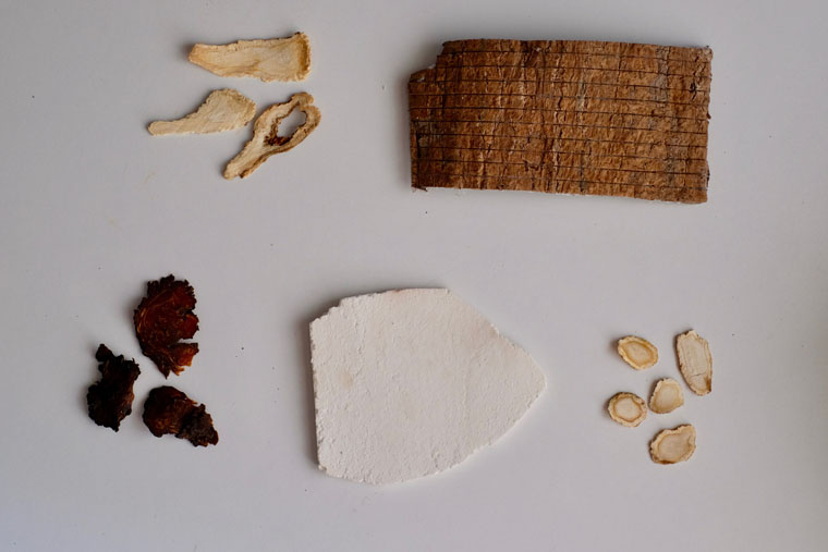Common Chinese Herbs in English and Chinese