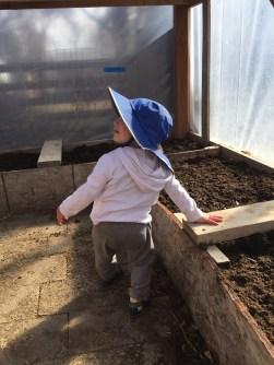 greenhouse new mama wellness