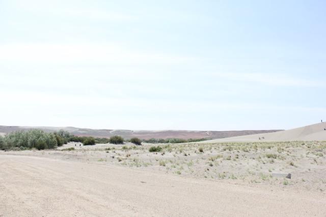 sand dune, desert, idaho