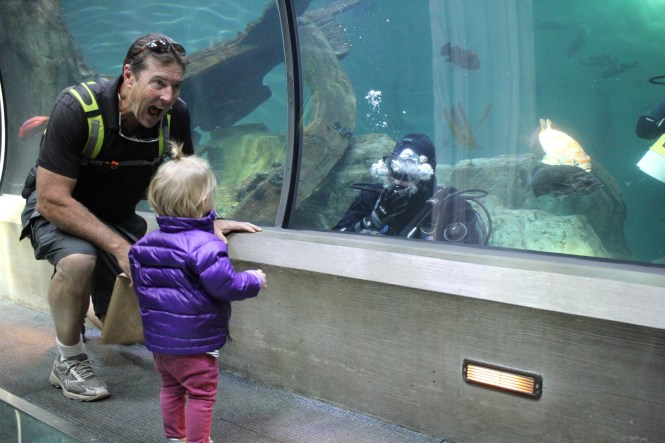 newport aquarium, newport oregon, things to do in newport, oregon coast, newport camping