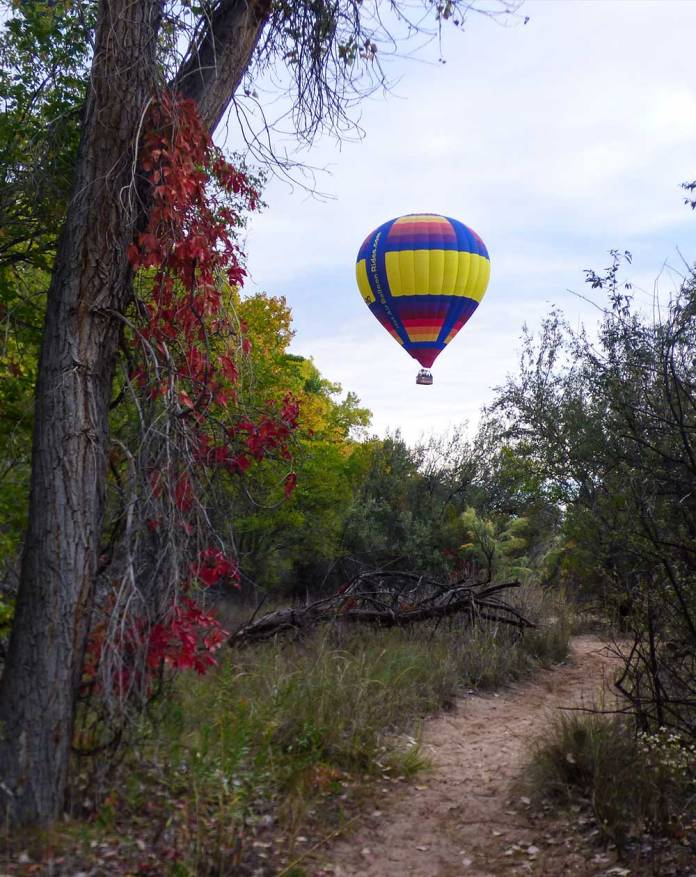 balloon-in-the-bosque