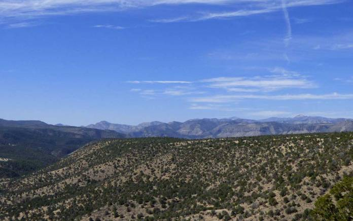 The Continental Divide Trail in the Gila Wilderness