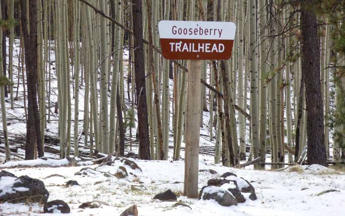 Gooseberry trailhead on Mount Taylor