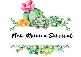 New Momma Survival