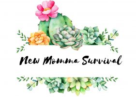 New Momma Survival