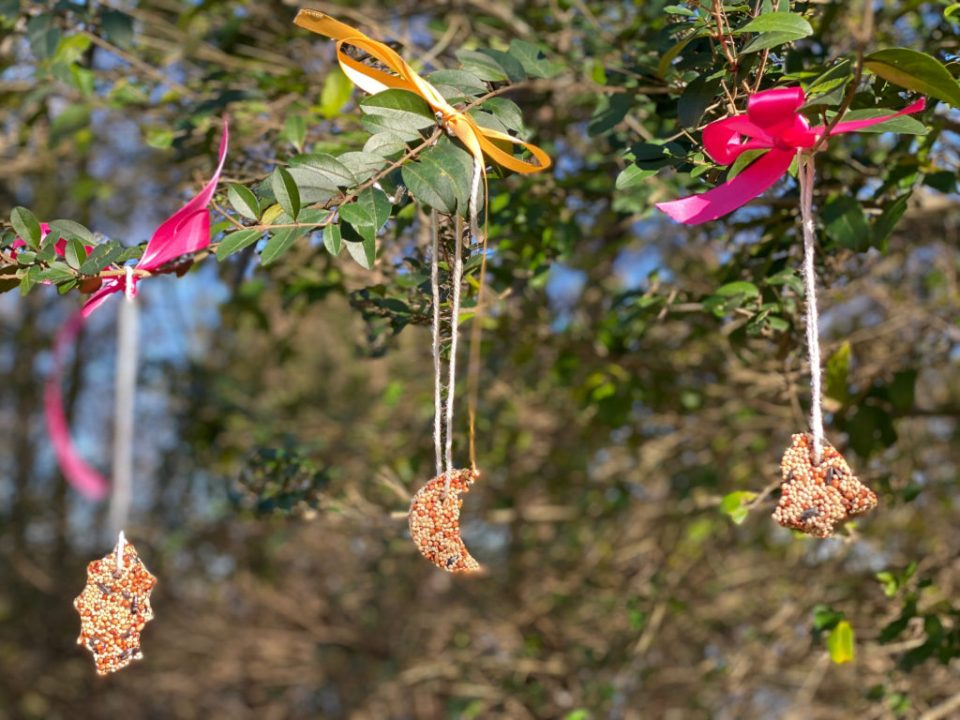 DIY Birdseed Ornaments by The New Moon Workshop