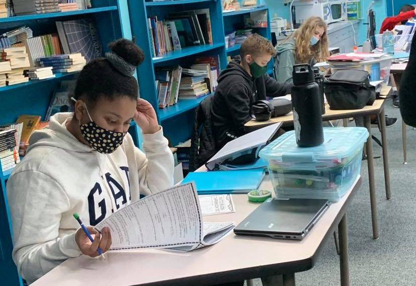 Mathematics in middle school