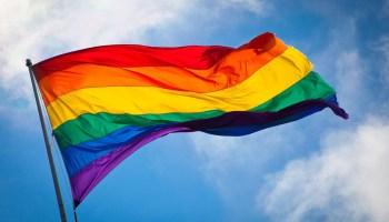 LGBT Flag - New Naratif