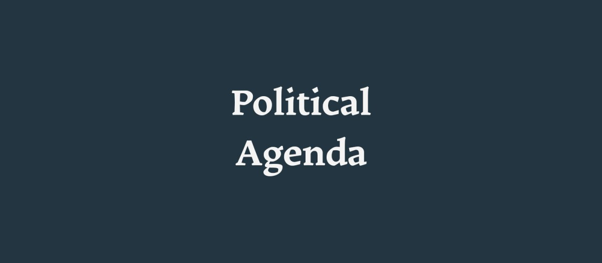 Political Agenda - New Naratif