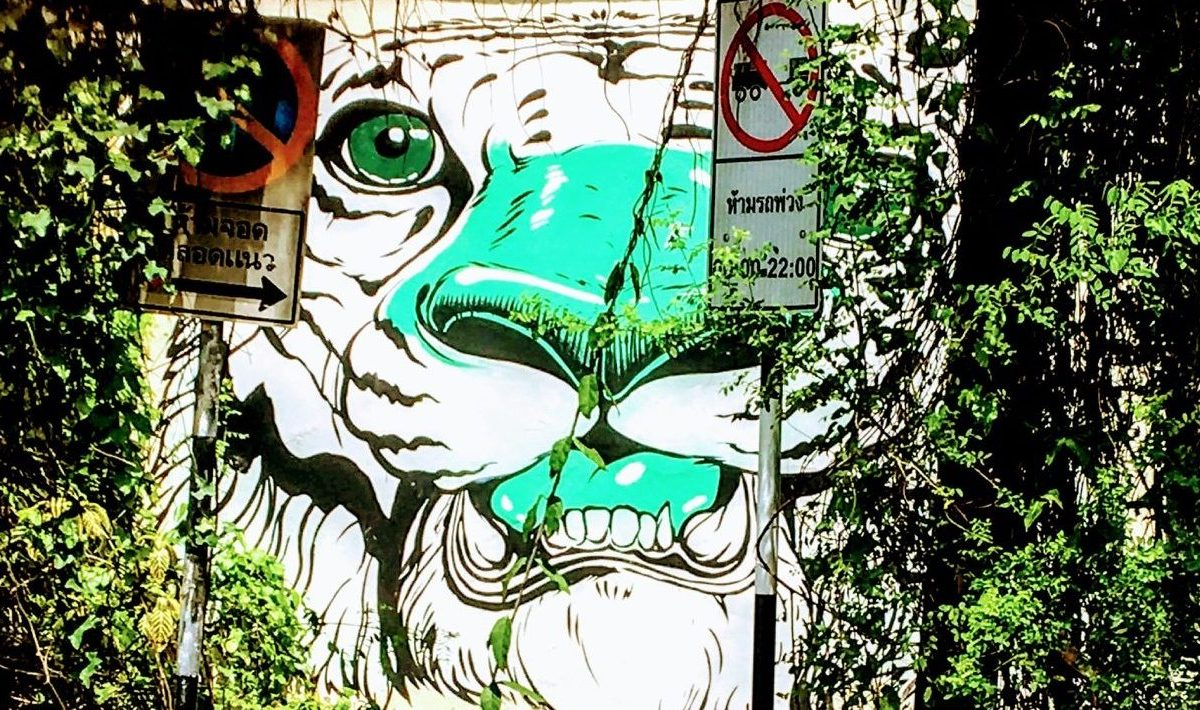 Chiang Mai Street Art - New Naratif