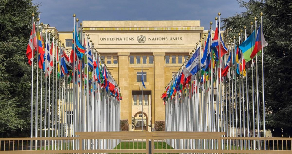 United Nations - New Naratif
