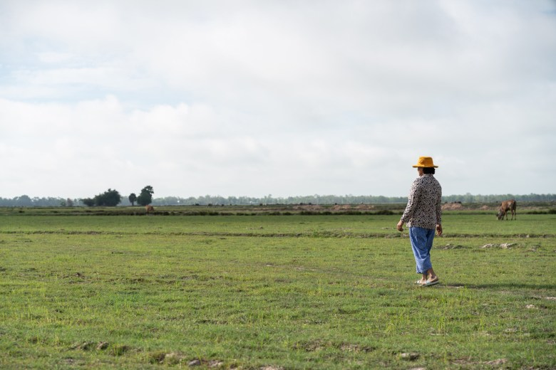 Kat Chang revisits the rice fields where her husband, Sarith, was bitten by a dog in 2019 and later died of rabies.