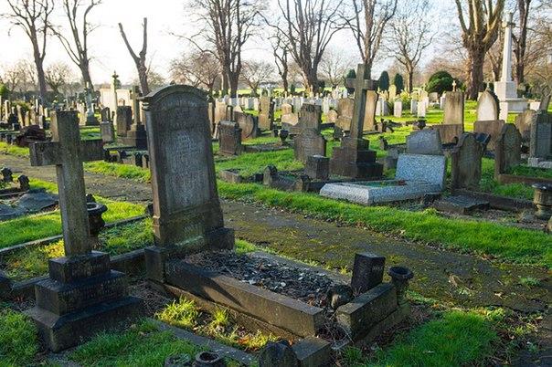Кладбище Эдмонтон, северо-восточный Лондон. Здесь Дэниэл Джонс спрятал свою долю украденного. Фото: Dominic Lipinski/PA