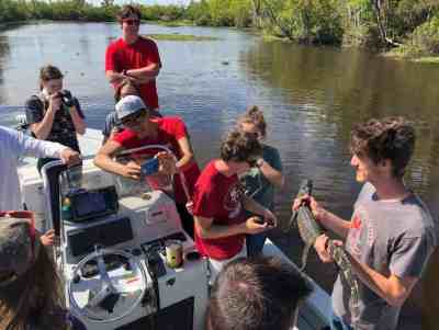 Educational Swamp Tours in New Orleans