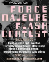 2020 Force Majuere Flash Contest Flier