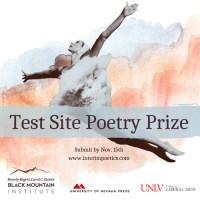 Interim 2021 Test Site Poetry Prize banner
