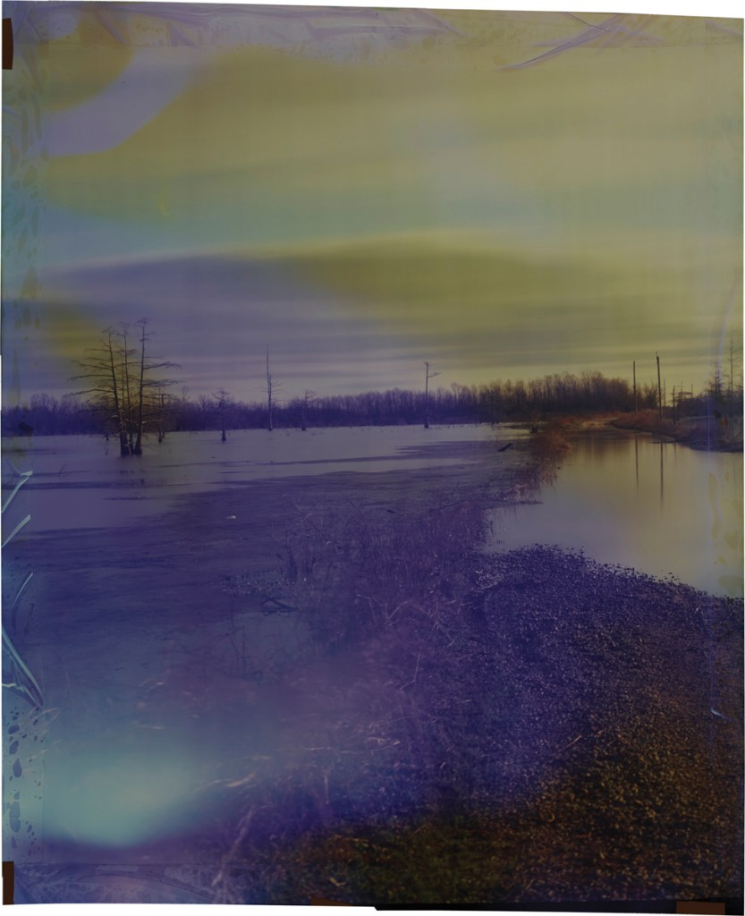 John Chiara County Line at Annis Brake, Variation A, 2014 Image on Ilfochrome Paper
